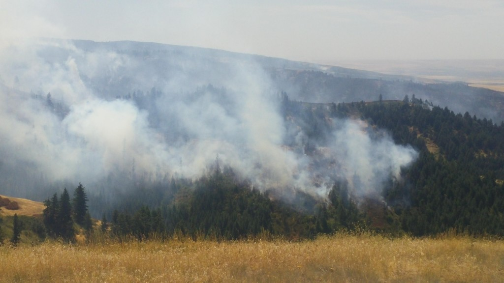 Blue Creek Fire near Walla Walla - Obadiah's Fire Fighters