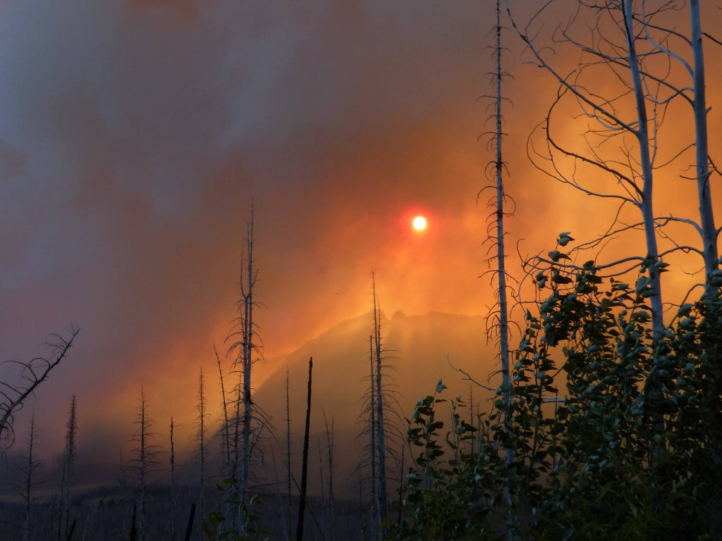 Glacier National Park - Reynolds Creek Fire - Obadiah's Wildfire Fighters