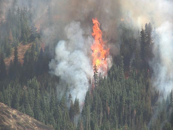 Blue Creek Fire near Walla Walla, WA - Obadiah's Wildfire Fighters