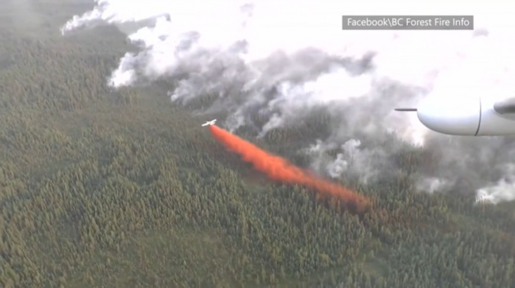 2015 Fires in Canada (British Columbia) - Obadiah's Wildfire Fighters