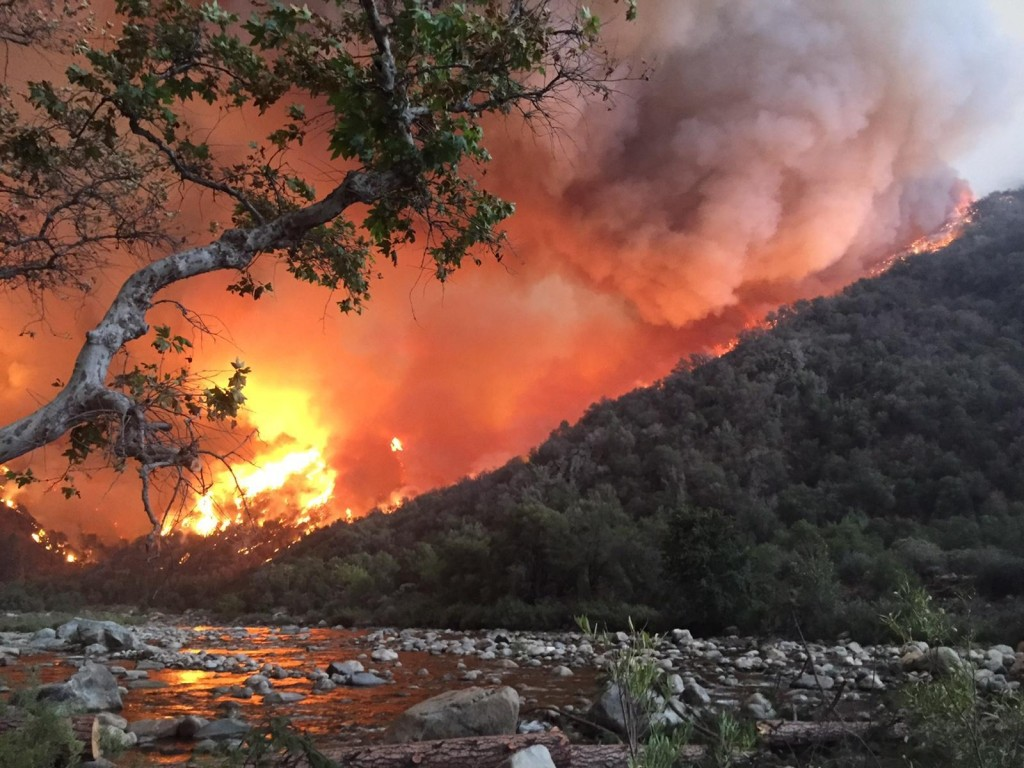 Rough Fire in California - Obadiah's Wildfire Fighters